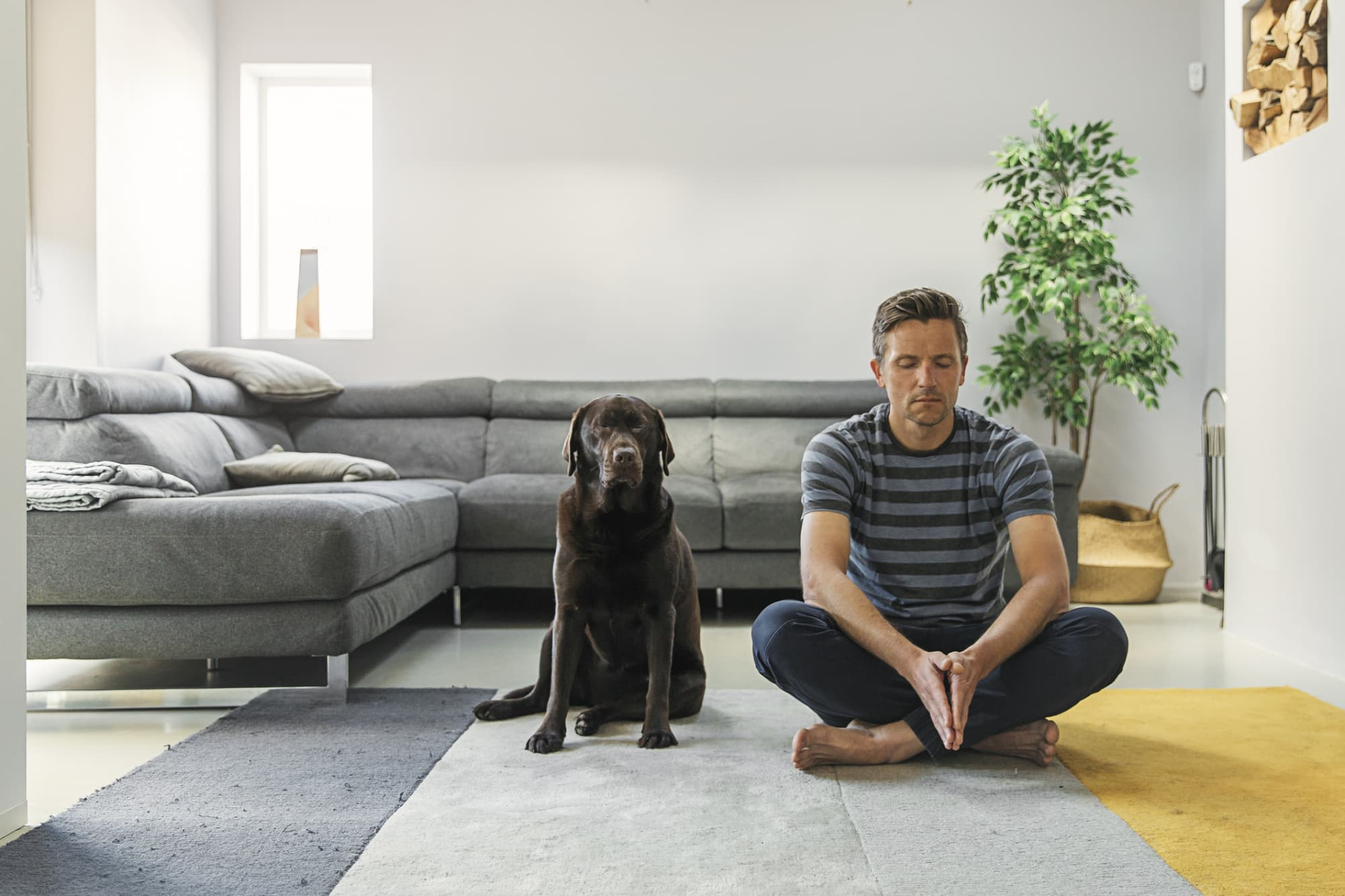 Best Meditation and Relaxation Techniques to Reduce Stress