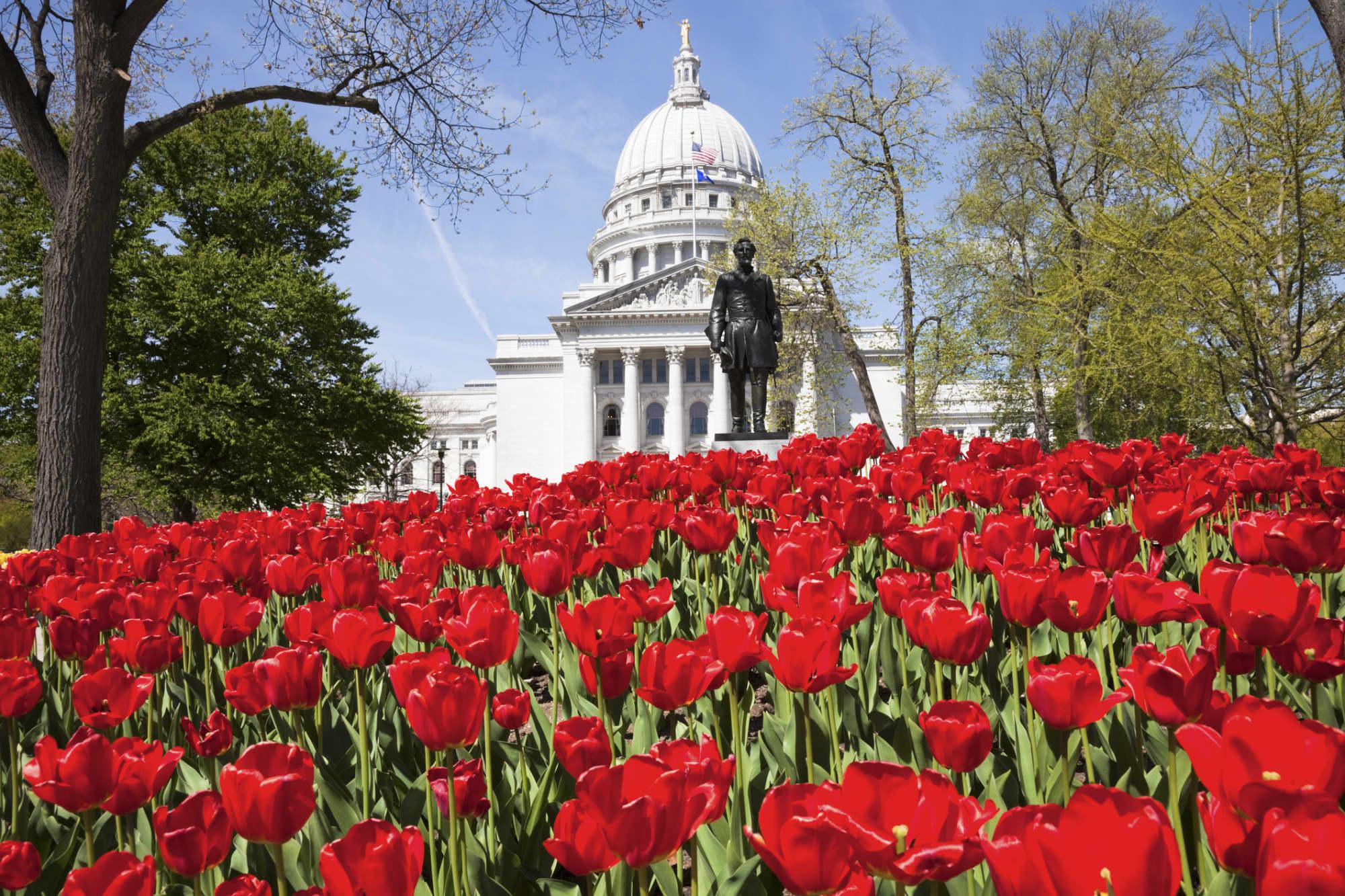 Hero Image Best Value Online Schools in Wisconsin 2021