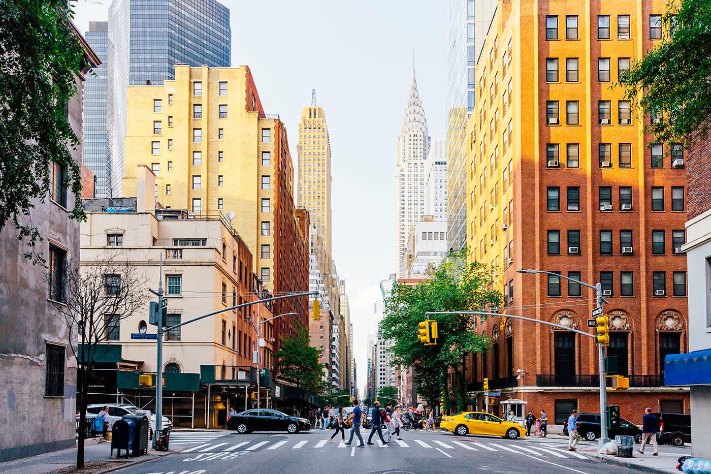 Online NP Programs in New York