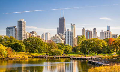 Online Colleges in Illinois 2021