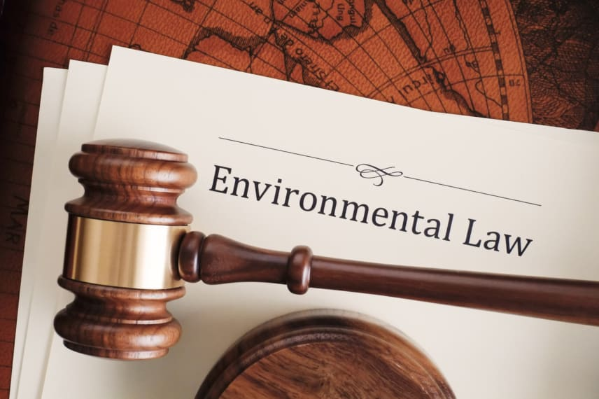 Getting Involved in Environmental Law