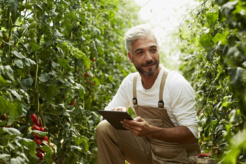 Affordable Agriculture Degrees 2021