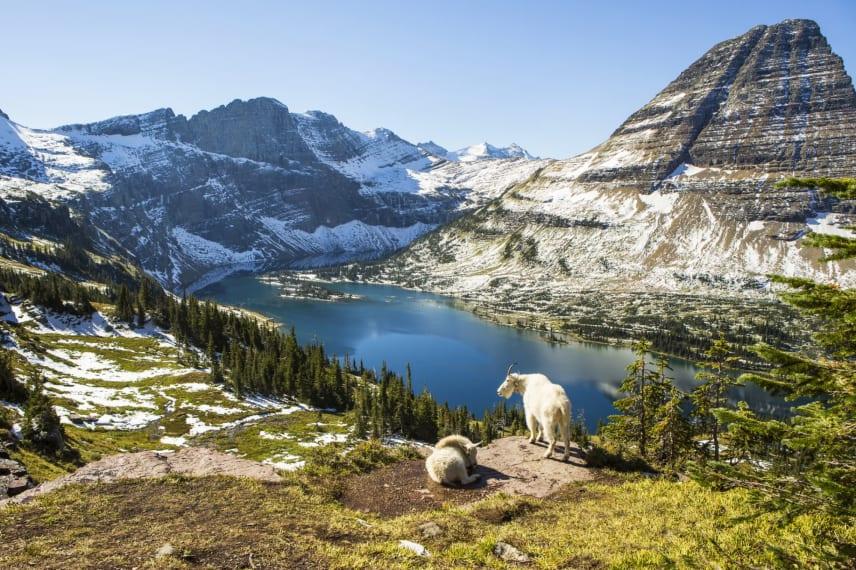Online Colleges in Montana
