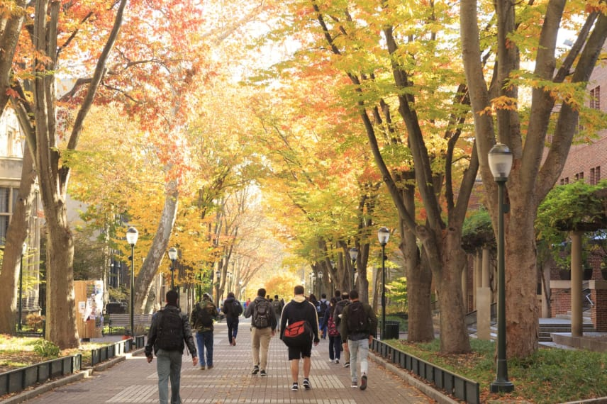 Pro Tips to Help You Get Used to College Campuses