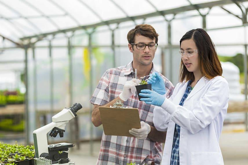 Online Environmental Science Degrees 2021