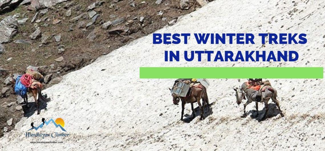Best winter treks in Uttarakhand