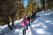 winter kedarkantha trekking