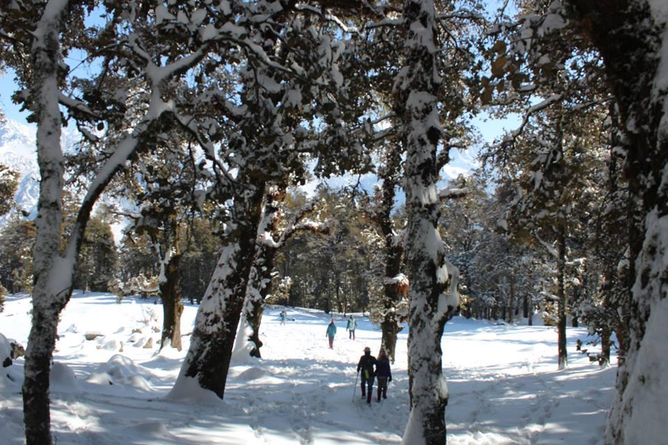nag tibba winter trek