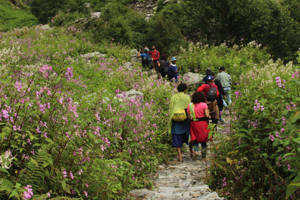 trail to Valley of Flowers