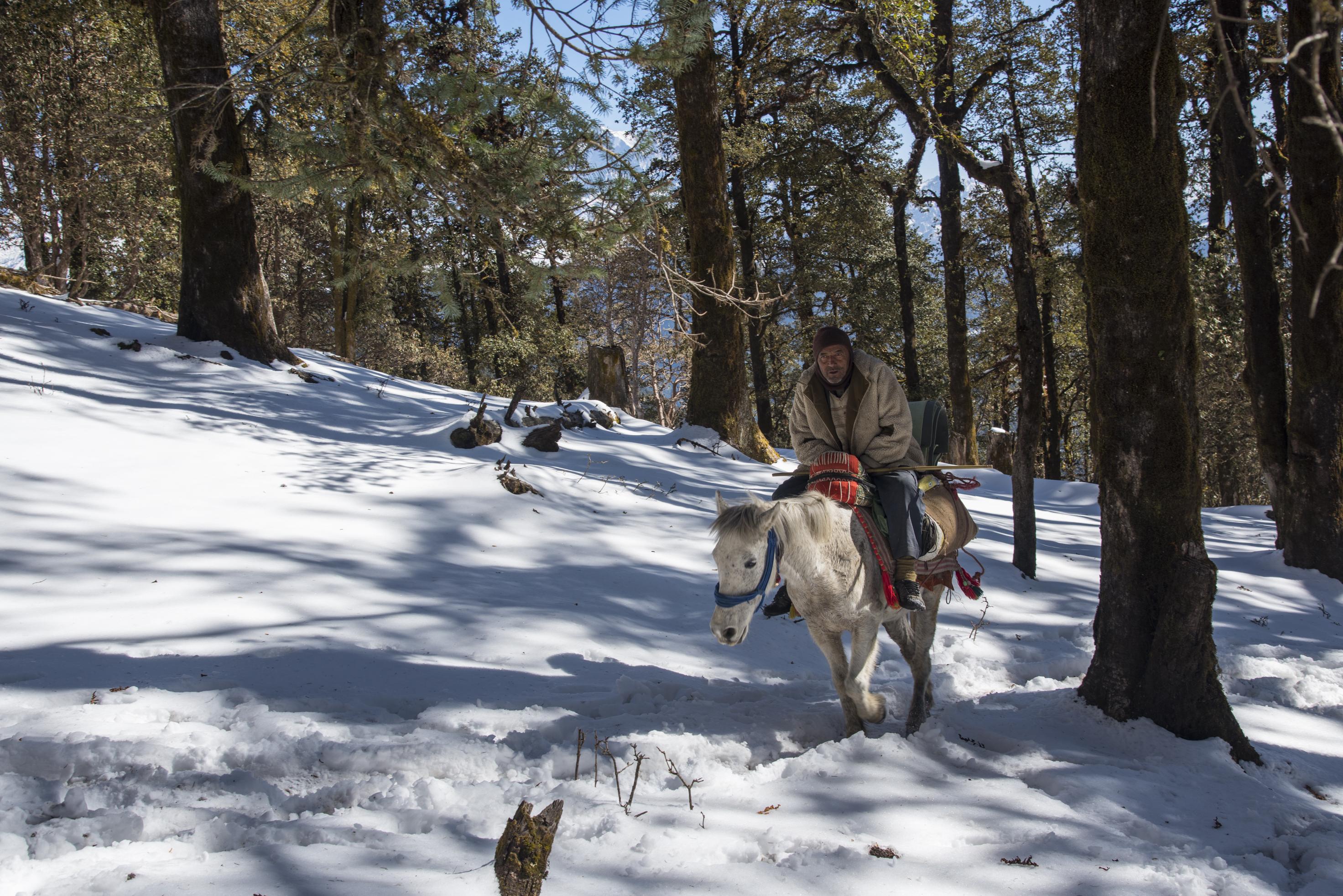 Brahmatal Trek distance