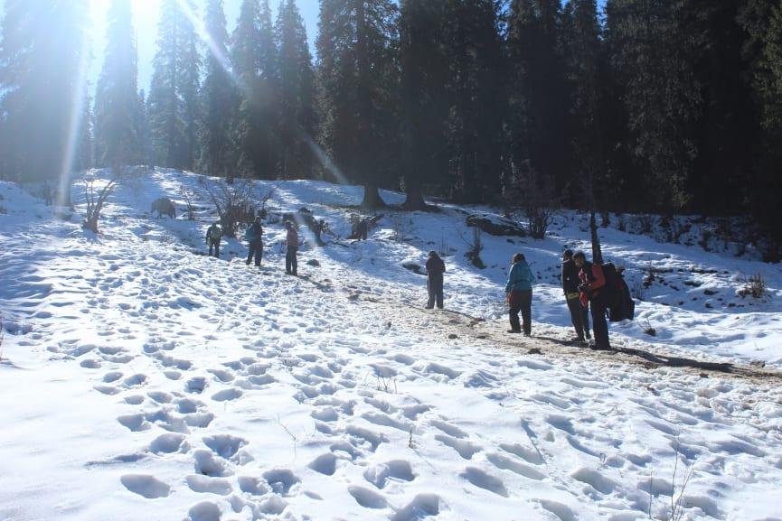 on the way to campsite of kedarkantha peak