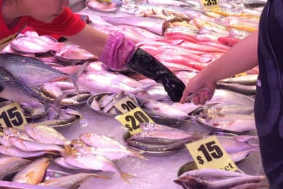 WATCH: How to Choose Right at the Wet Market