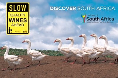 Join us for a Discovery of South African Wine