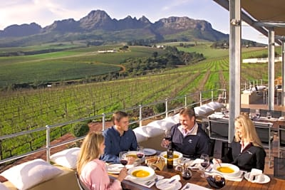 Versatile South African Wine