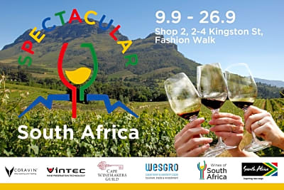 Rewriting Wine 101: SPECTACULAR South Africa