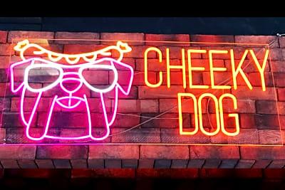 David Greenberg Reviews... Cheeky Dog