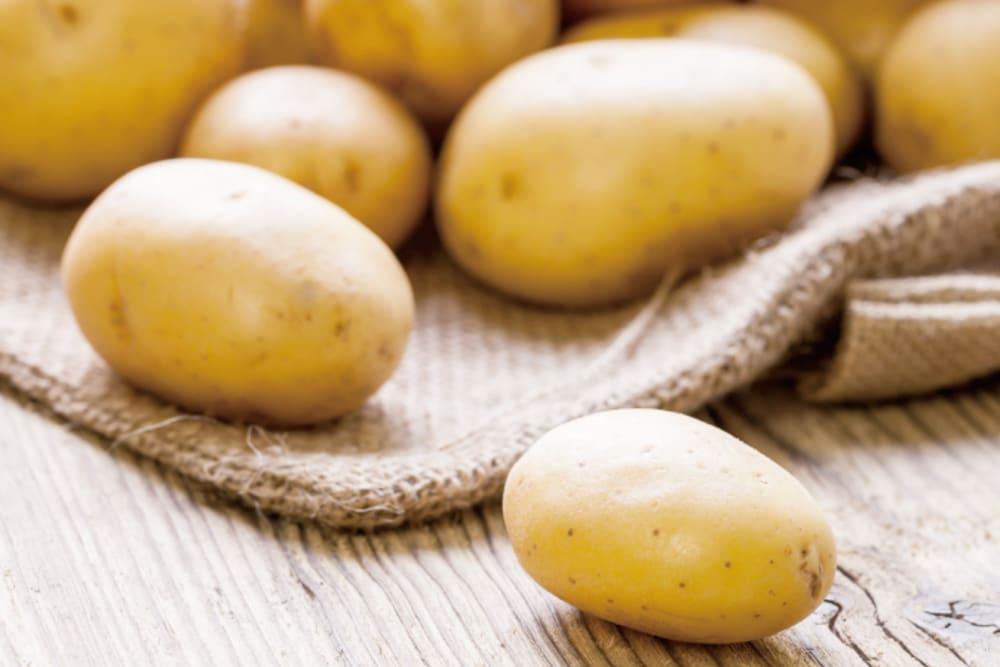 The Potato Journey