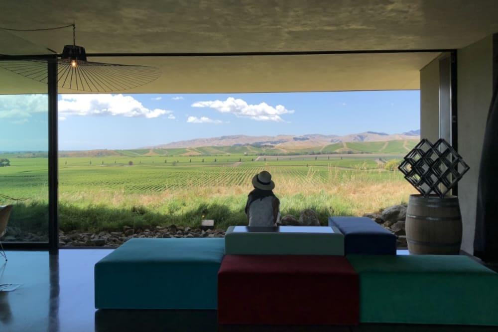 Winter Blues? Escape to New Zealand: Soaking up Kiwi Wines, Part 1