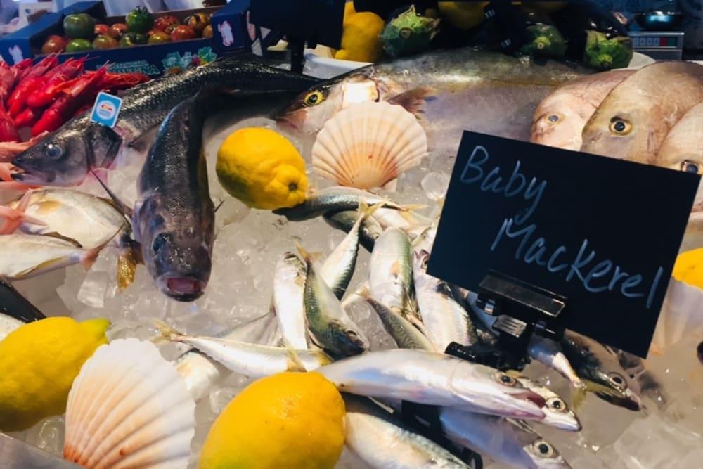 New Restaurant: Trattoria del Pescatore