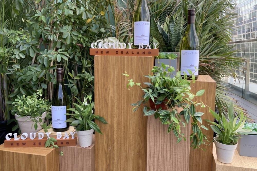 Rewriting Wine 101: Cloudy Bay Sauvignon Blanc 2020 at SEVVA