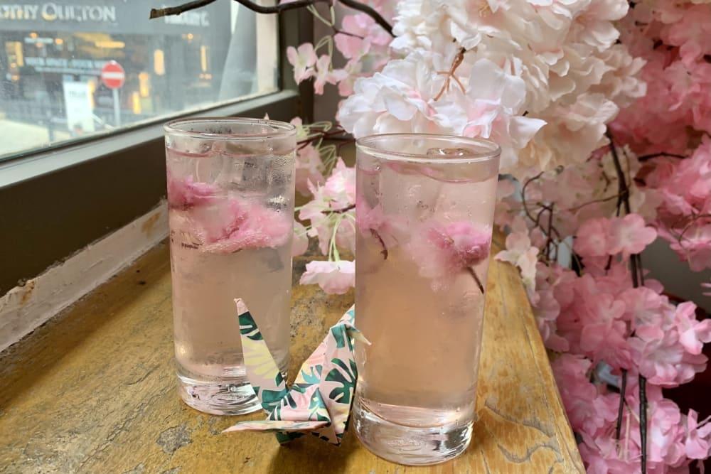 Uma Nota x Okra's Sakura Brunch