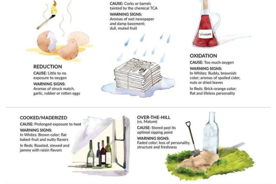 Rewriting Wine 101: How to Spot a Faulty Wine