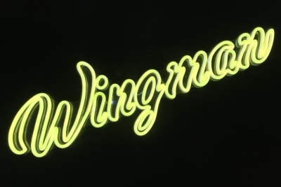 David Greenberg Reviews... Wingman