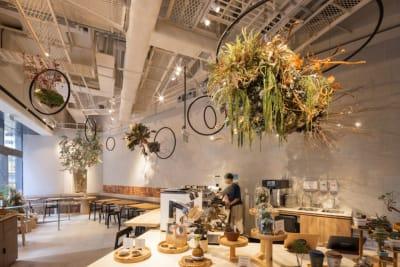 HK Café Culture: Natura: