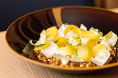 First Look: All-Day Veggie-Focused Dining at Moxie