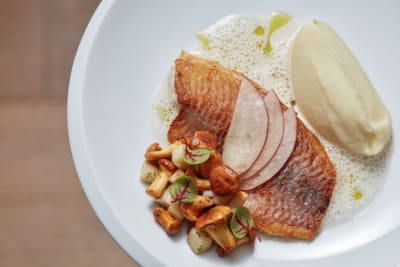 First Look: Margo, Led by Acclaimed Chef Mario Paecke