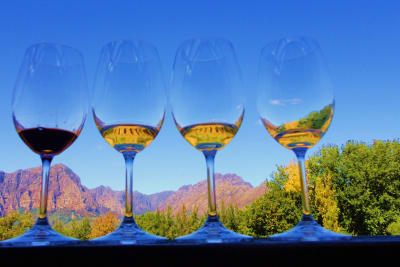 South Africa: A New World Wine Producer with Over 350 Years of History