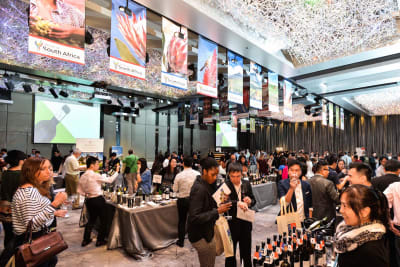 A Celebration of South African wine