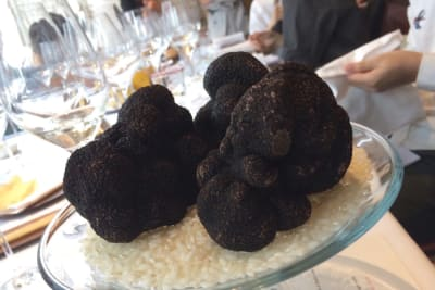 Octavium's One-Night-Only Truffle Menu