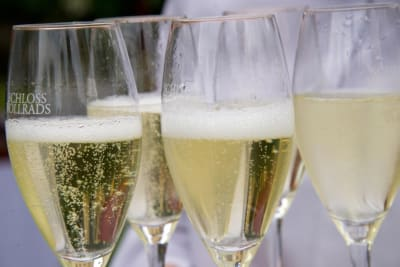 Rewriting Wine 101: Schloss Vollrads