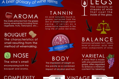 Rewriting Wine 101: Demystifying Wine Jargon
