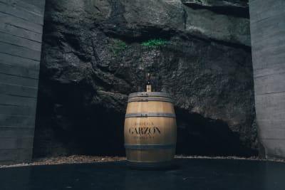 Rewriting Wine 101: Uruguayan Wine