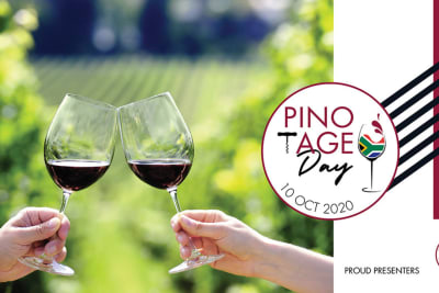 Rewriting Wine 101: South African Pinotage