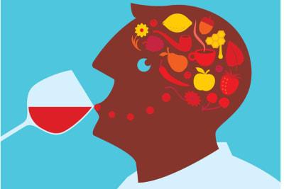Rewriting Wine 101: Taste Like a Pro Series – Taste