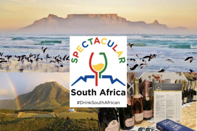 Rewriting Wine 101: SPECTACULAR South Africa Returns