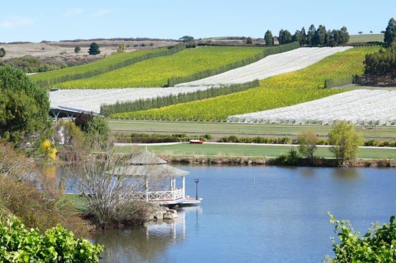 7 Reasons Why Every Foodie Should Visit Tasmania