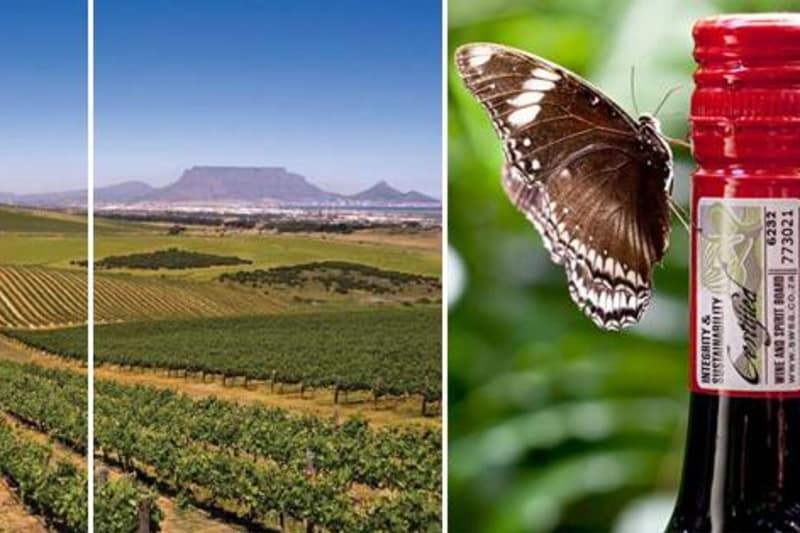 South African Wine Festival 11 April