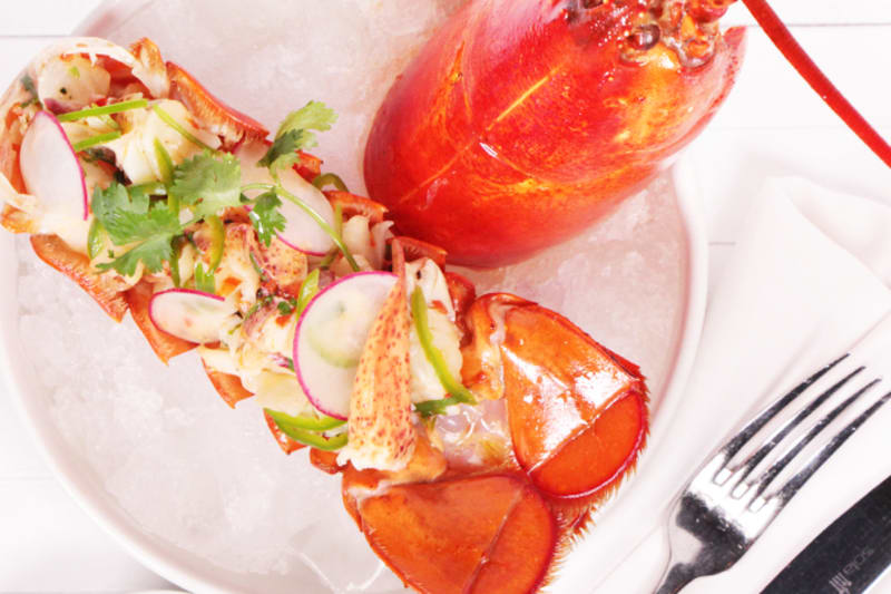 Lobster Ceviche Recipe