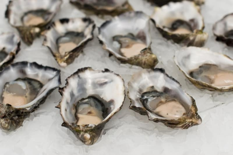 Food Tech Bites: Automated Oysters