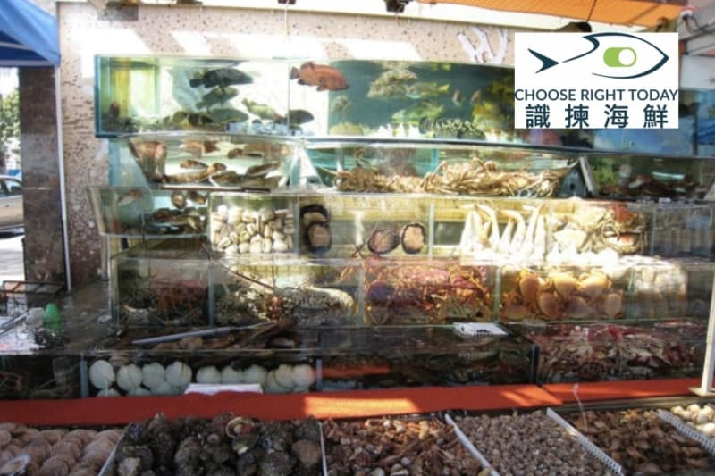 How to Choose Right in Sai Kung