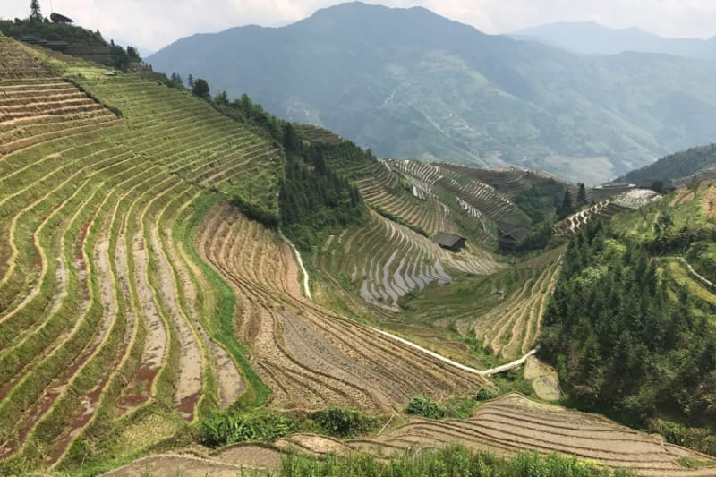 Foodie Forays: Guilin