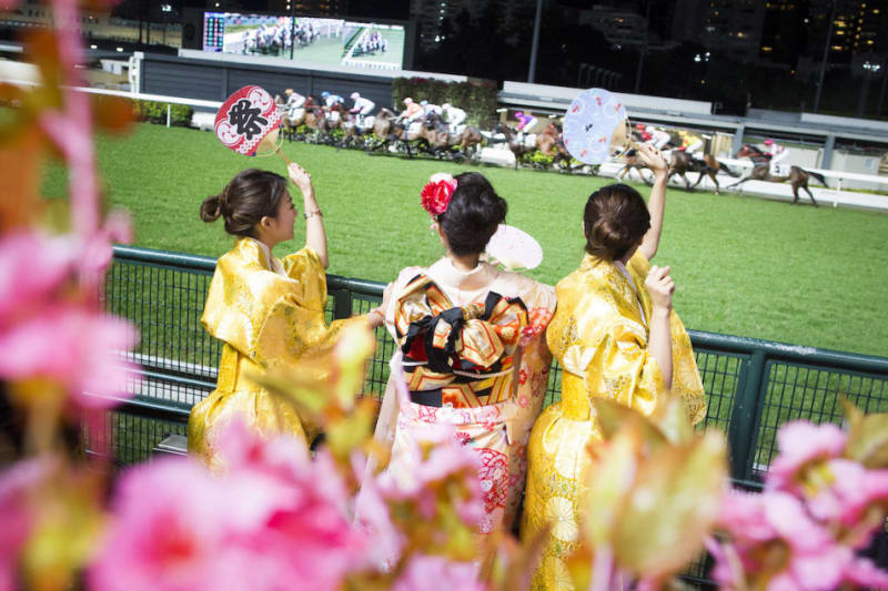 Konnichiwa, Happy Wednesday Fans!