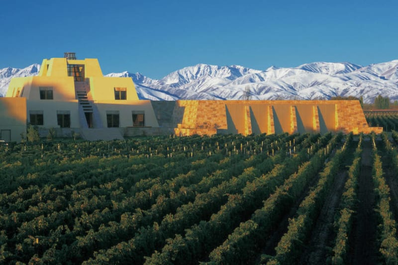 Argentine Wines: More than just Malbec