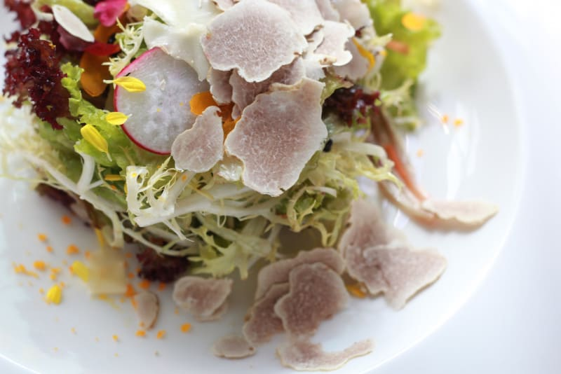 3 White Truffle Dishes Worth the Price Tag