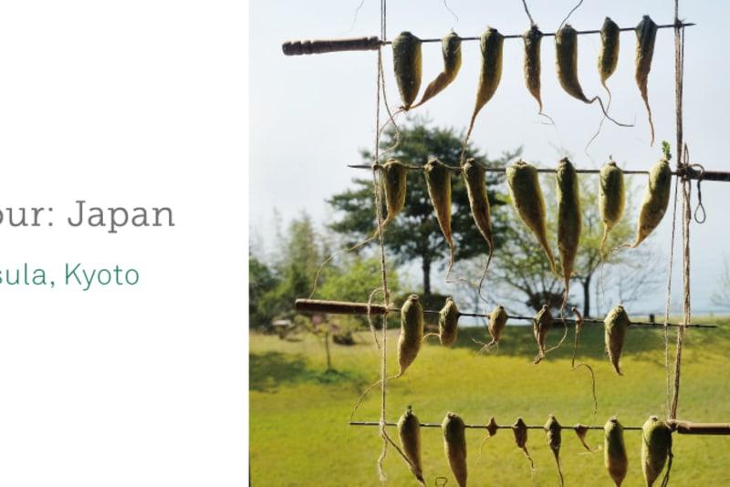 #NURonTour: Japan (Part 1)