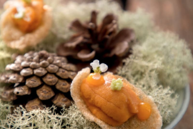 A Tale of Two Restaurants: Arbor & ÉCRITURE